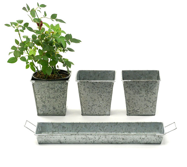 Galvanized Herb Pots and Tray - 3 Pots + Tray