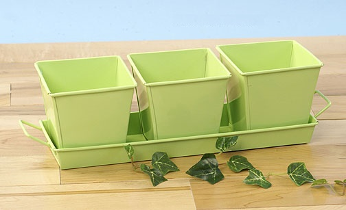 Herb Container Set - 3 4in Square Galvanized Lime Green
