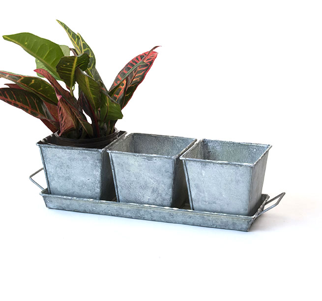 Herb Container Set - 3 Pots + Tray - Vintage Look