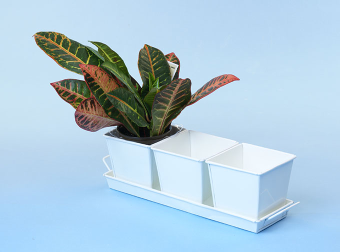 Herb Container Set - 3 4in Square Galvanized White